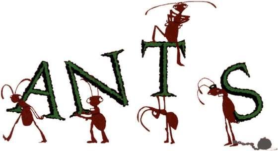 Working ants - photo#24